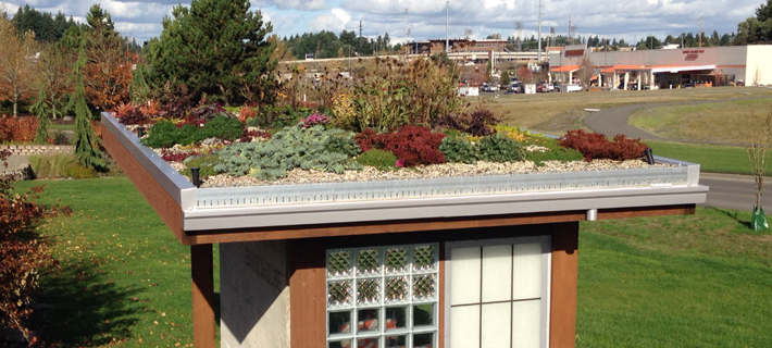 Green Roofing Roofing Solutions Nw